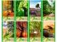 Блокнот A6 на скобе Green Planet, 32 листа 0